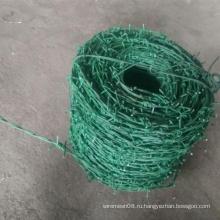 Зеленым Цветом Колючей Железной Проволоки Сетки