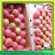 China Apfel roten Stern 20kg Karton