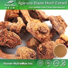 High Quality Agaricus Blazei Murill Extract (Polysaccharide 10%~50%)