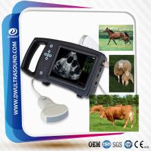 DW-S650 máquina de ultrasonido para la cría de cerdos, ultrasonido porcino