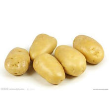 Patata fresca de China
