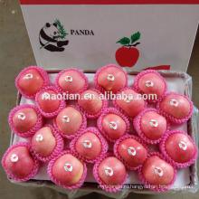Китай Янтай лучшей цене Фуджи яблоко