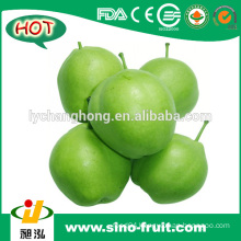 [HOT] 2014 sweet Pear supplier from China
