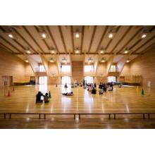 Piso de madera de alto rendimiento Maple Sports