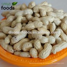 Alimentos de África occidental de la concha de maní