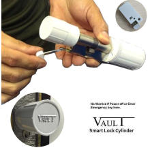 Сейфовый цилиндр C200 Vault