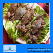 Fournisseur de crabe à la boue en vente