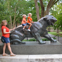 Hochwertige Statuen Tiger