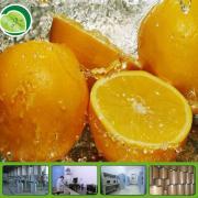 Fresh Orange Powder for Beverage or food additive
