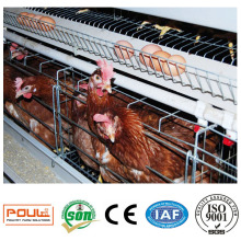 Poultry Use Galvanized a Type Layer Cages