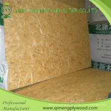 Pappel Material wasserdicht OSB Board mit günstigen Preis
