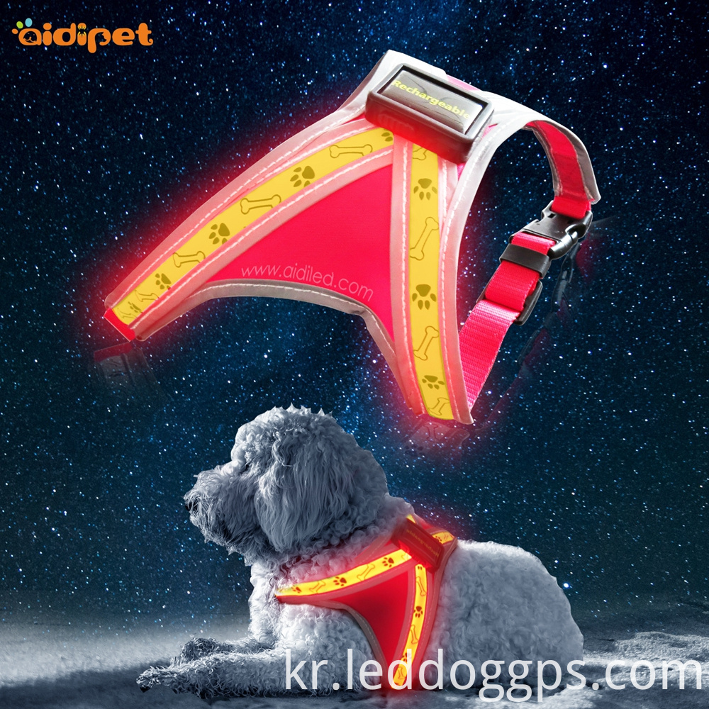 Led Harness For Small Dogs