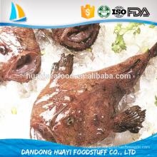 Nova chegada peixinho peixe fresco natural todo o tamboril