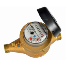 Compteur d'eau Jet multi fer Type sec (LXSC-Z1)