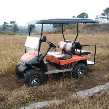 cheap gas powered golf carts for sale with cheap prices