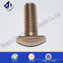 non standard T type bolt all sizes with ISO standard