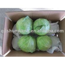 2011chinese fresh round cabbage