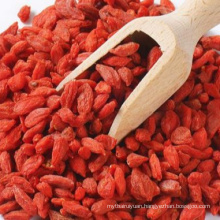 Dark Red Goji Berry