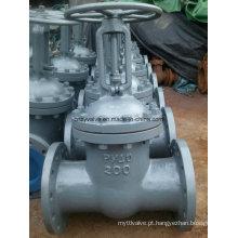 Ferro fundido Pn40 Dn200 Válvula GOST