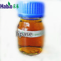 Lipase industrielle pour Biodesel