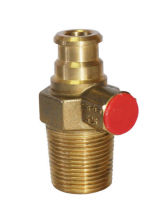 Custom Kitchen Lp Cylinder Brass Gas Valve For Home Cooking Tl-cs-24