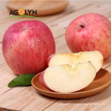 High Quality Fresh Sweet Red Fuji Apple