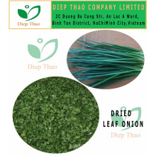 DEHYDRATED GREEN ONION LEAVES/