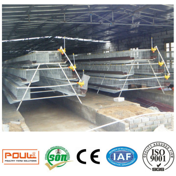 Automatic Chicken Cage for Layers Broilers Pullets