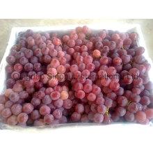 Uva fresca con verde y rojo