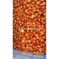 30-40/40-50 fresh chestnuts wholesale chestnuts for Egypt