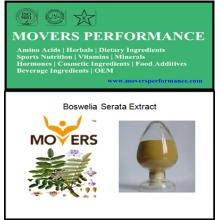 Extrato de plantas de alta qualidade: Boswellin Serata Extract