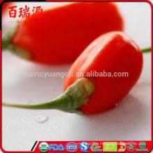 Бесплатный образец сушеный органический ягоды Годжи Мушмула улучшить иммунитет