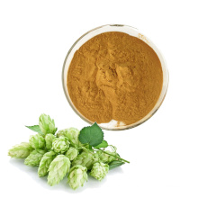 Free samples Hops Extract Humulus Lupulus Extract Hops Flower Extract Powder