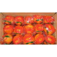 Süßer Schnitt Frischer Nabel Orange