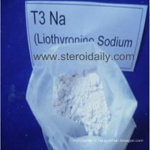 L-Triiodothyronine (T3) ou Liothyronine Sodium T3 Na stéroïde