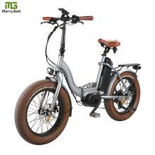 City Ebike Aluminum Folding Bike/ Electric Folding Bike for Adults 48V