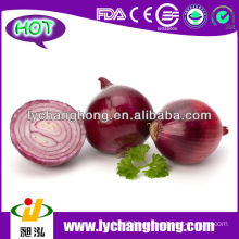 2014 Fresh Red Onion