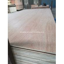 Colagem do núcleo E1 do álamo da madeira compensada da madeira para a mobília