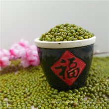 Chinese new crop Green Mung Beans
