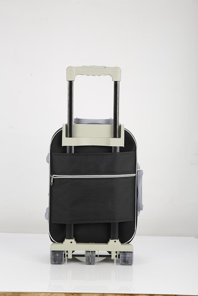 Large Plate Wheel Luggage Case