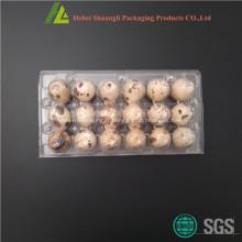 Emballage d'oeufs de caille en plastique transparent à vendre