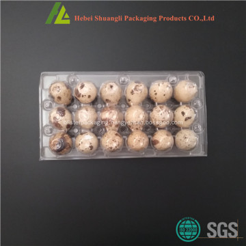 Clear plastic quail egg packing for sale
