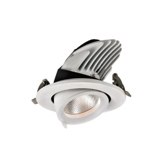 Pendant Warm White 12W LED Downlight