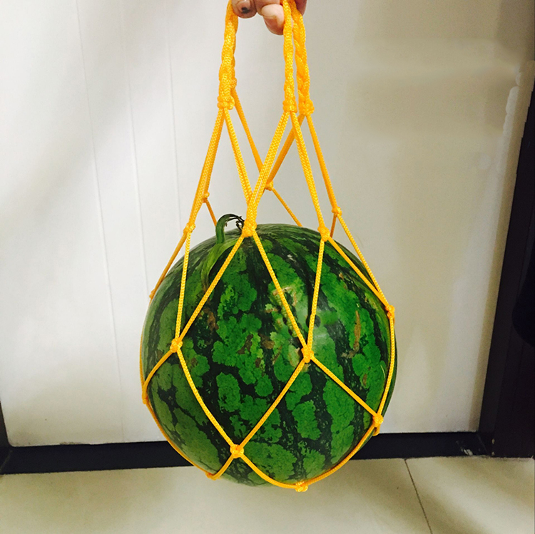 Greenhouse Fruit Growing Net Bag