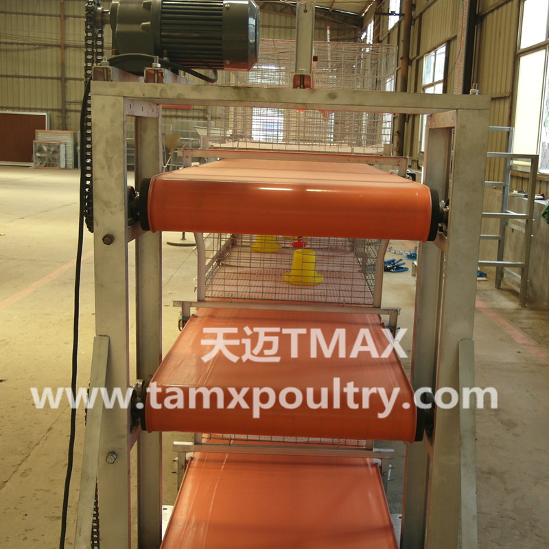 Poultry Manure Removal System