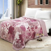 Mink Raschel Blanket with Popular Design (YJ-1566)