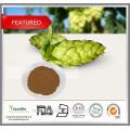 Bulk Hopfen Extrakt / Hopfen Blütenextrakt Pulver, 4%, 8% Flavon, Xanthohumol 5%