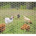 Hexagonal Wire Netting in Roll