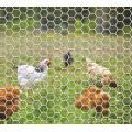 Rede de fio hexagonal em rolo
