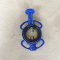 Tipo Válvula Borboleta Válvula-Gg25 Corpo